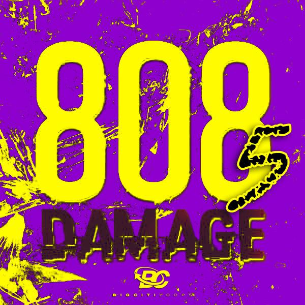 808 Damage 5