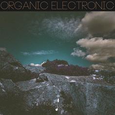 Organic Electronic