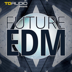 TD Audio: Future EDM
