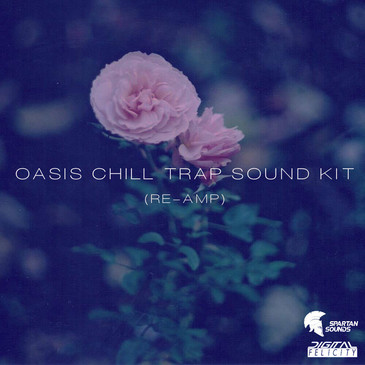 Oasis Chill Trap Sound Kit (Re-Amp)