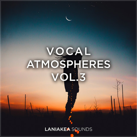 Vocal Atmospheres 3