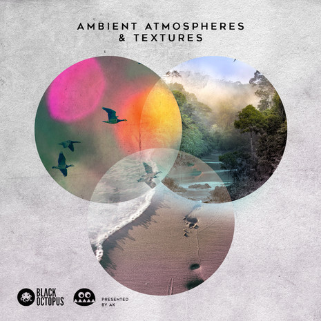Ambient Atmospheres & Textures