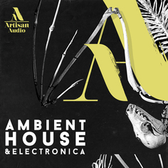 Ambient House & Electronica
