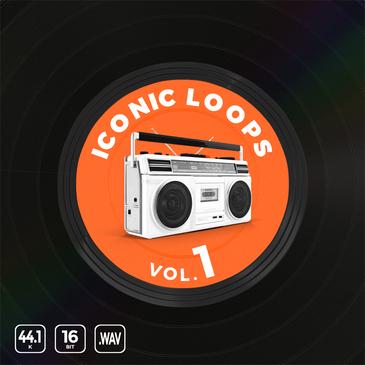 Iconic Hip Hop Loops Vol 1