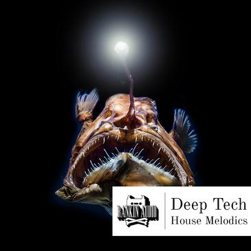 Deep Tech House Melodics