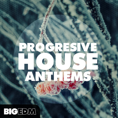 Progressive House Anthems 1