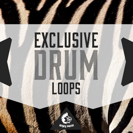 Exclusive Drum Loops