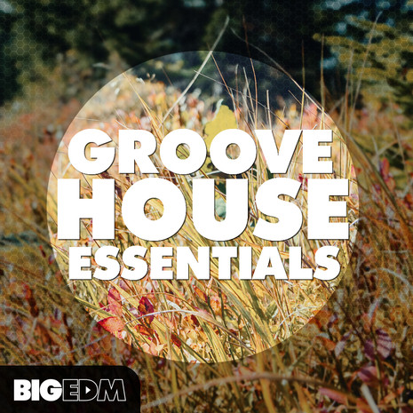Big EDM: Groove House Essentials