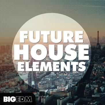 Big EDM: Future House Elements