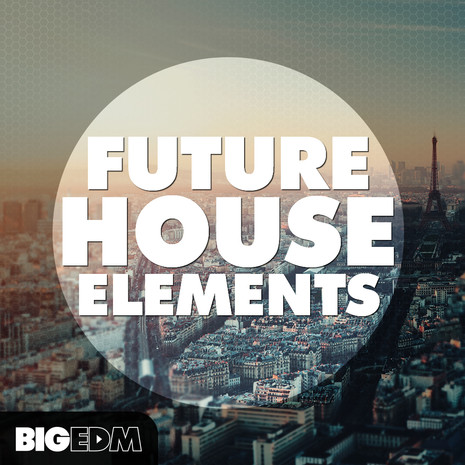 Big EDM: Future House Elements