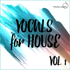 Vocals For House Vol 1