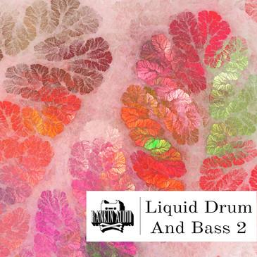 Liquid Drum & Bass 2
