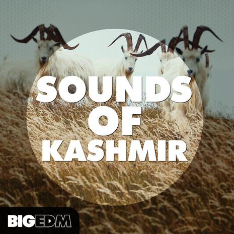 Big EDM: Sounds Of Kashmir