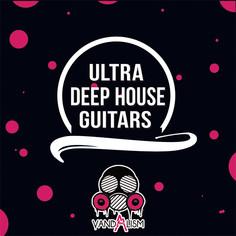 Ultra Deep House Guitars