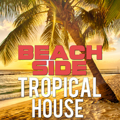 Beachside Tropical House
