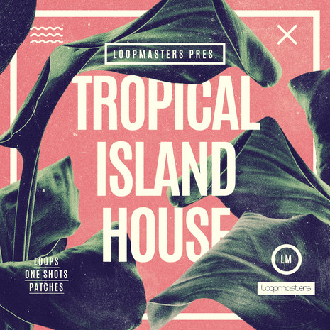 Tropical Island House