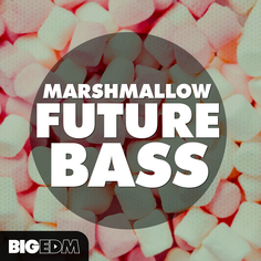 Big EDM: Marshmallow Future Bass