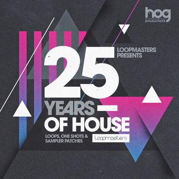 Gianni Bini: 25 Years Of House
