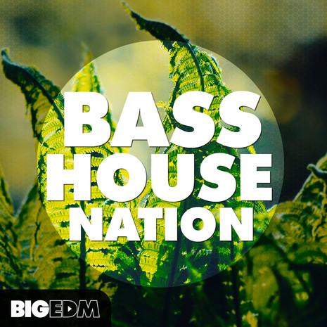 Big EDM: Bass House Nation