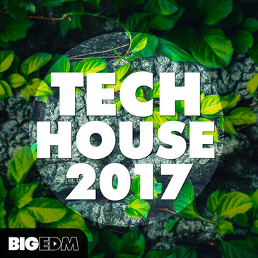 Big EDM: Tech House 2017