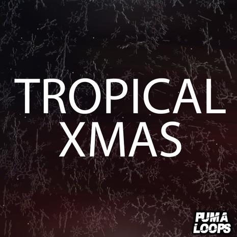 Tropical Xmas