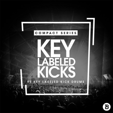 Compact Series: Key Labelled Kicks