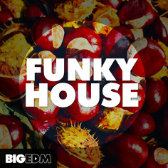 Big EDM: Funky House