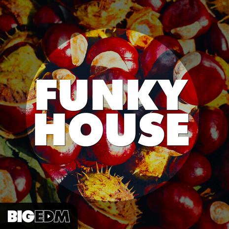 Big EDM: Funky House