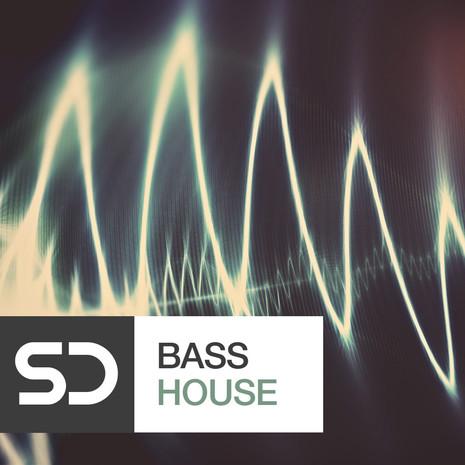 Sample Diggers: Bass House