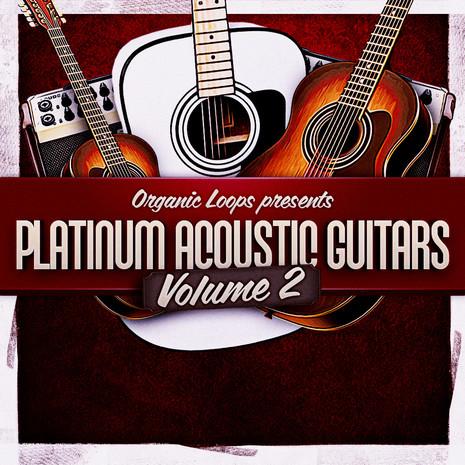 Platinum Acoustic Guitars 2