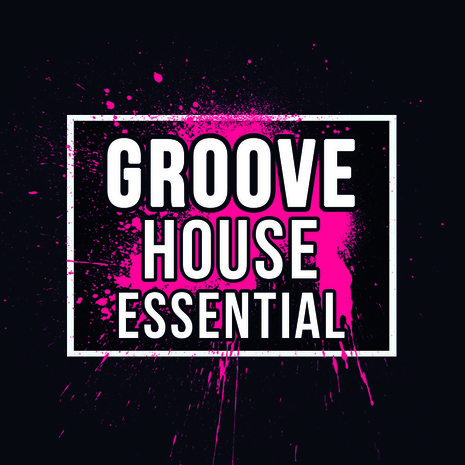 Groove House Essential