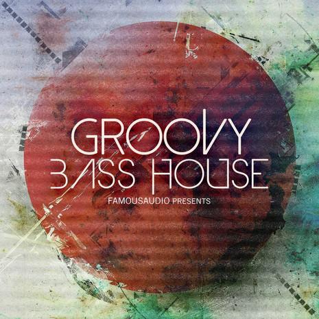 Groovy Bass House