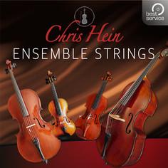 Chris Hein: Ensemble Strings