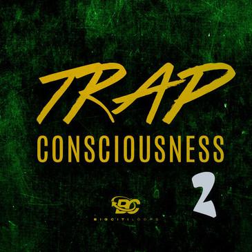 Trap Consciousness 2
