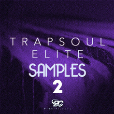 Trapsoul Elite Samples 2