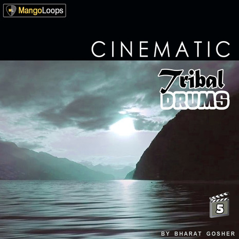 Cinematic Tribal Drums Vol 5