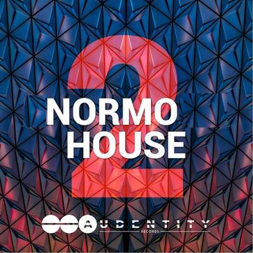 Normo House Vol 2