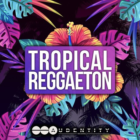 Tropical Reggaeton Vol 1