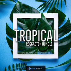 Tropical & Reggaeton Bundle