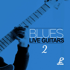 Blues Live Guitars 2