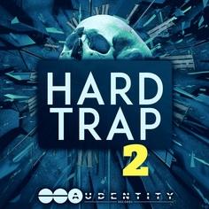 Hard Trap 2