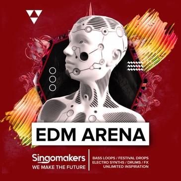 EDM Arena