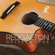 Reggaeton Guitar Moods