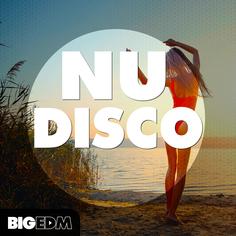 Big EDM: Nu Disco
