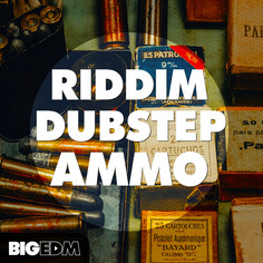 Big EDM: Riddim Dubstep Ammo