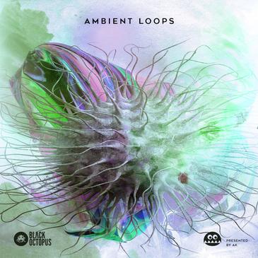 AK: Ambient Loops