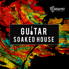 Guitar Soaked House