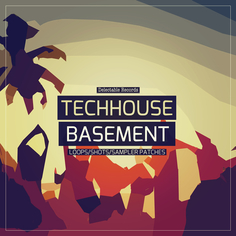 Tech House Basement
