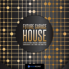 Future Garage House