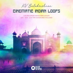 Cinematic Indian Loops